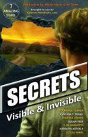 Secrets: Visible & Invisible by Corinna Turner, Cynthia Toney, Theresa Linden, Susan Peek, T.M. Gaquette, Carolyn Astfalk, & Leslea Wahl